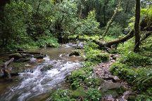 David Scott Trail, Mawphlang, India