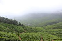 Kolukkumalai Tea Estate, Kottagudi, India
