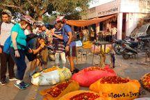 Le Tour De India, Jaipur, India