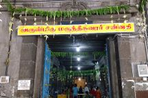 Marundeeswarar Temple, Chennai, India