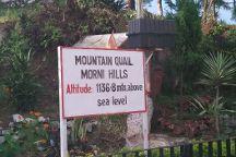 Morni Hills, Haryana, India