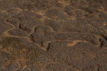 Prehistoric Rock Art Gallery, Rivona, India