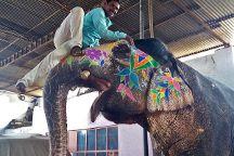 Private Tours of North India, Jaipur, India