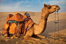 Rajasthan Car Tours