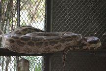 Rajiv Gandhi Zoological Park, Pune, India