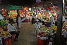 Reality Tours and Travel, Mumbai, India