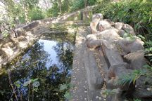 Shesh-Saiya, Bandhavgarh National Park, India