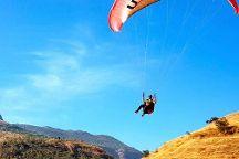 Templepilots Paragliding