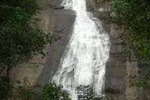 Thusharagiri Waterfalls, Thamarassery, India