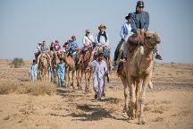 Trotters Tours & Travels Camel Safari