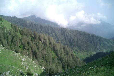 Dainkund Peak, Dalhousie, India