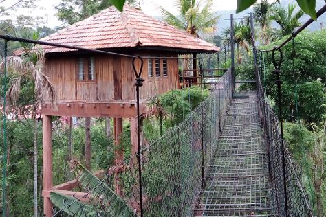 Green Park Ayurvedic & Spices Plantation, Thekkady, India