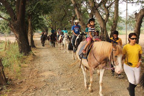 Japalouppe equestrian Centre, Talegaon, India