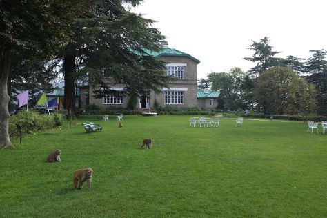 Maharaja's Palace, Chail, India