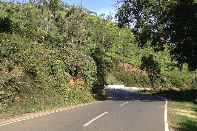 32-km Loop Road, Yercaud, India
