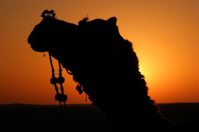 Ganesh Travels, Jaisalmer, India