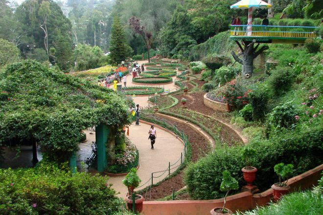 Government Botanical Garden, The Nilgiris District, India