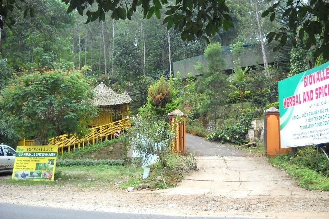 Green Field Spices and Herbal Garden, Munnar, India