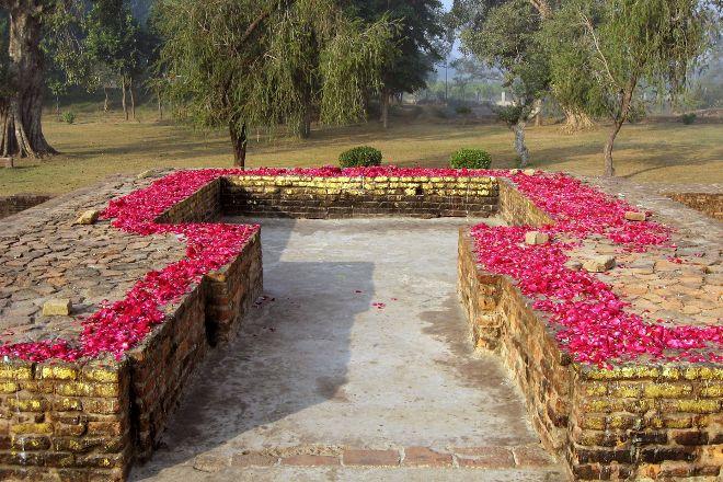 Jetavana, Shravasti, India