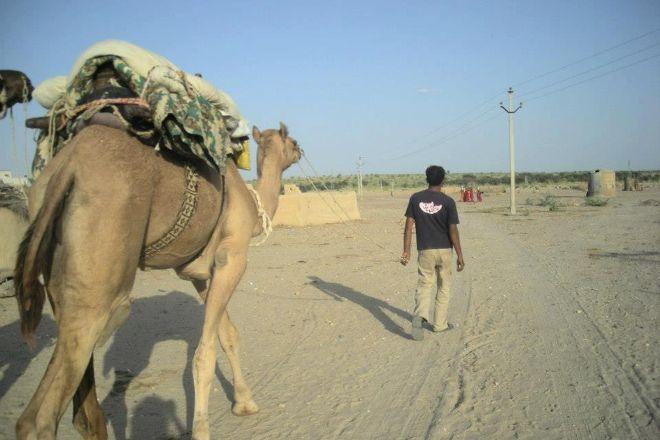 Kamals Private Camel Tour - Day Tours, Jaisalmer, India
