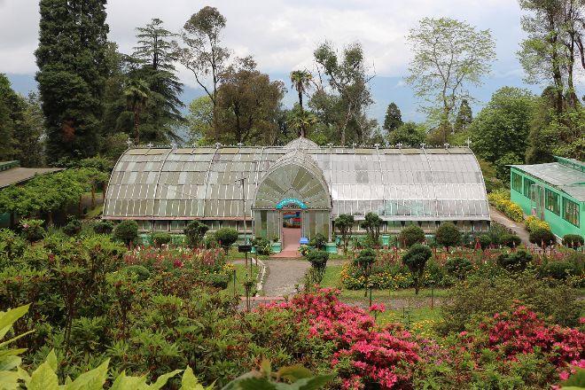 Lloyd Botanical Garden, Darjeeling, India