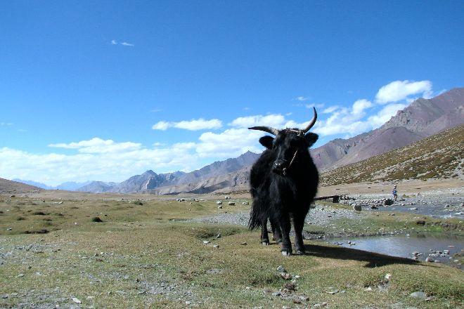 Markha Valley, Leh, India