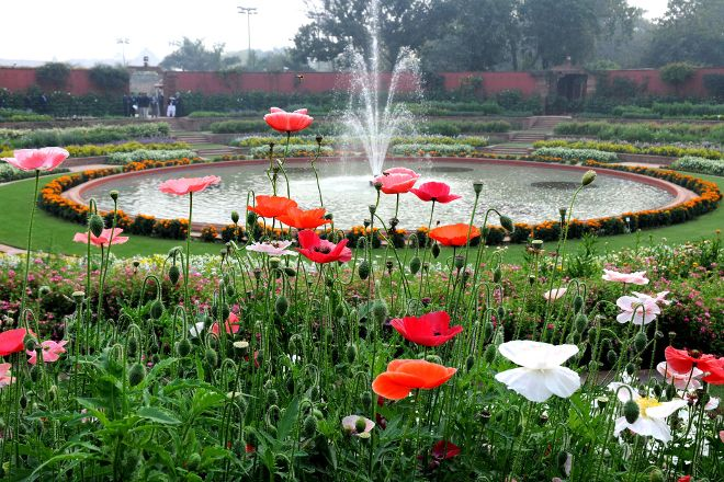 Mughal Garden, New Delhi, India