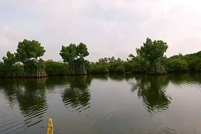 Munroe Island Backwaters Canoe Tours, Kollam, India