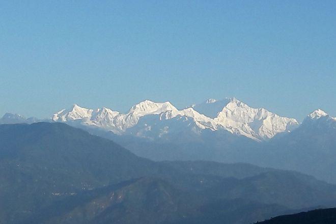 Orange Valley Tea Estate, Darjeeling, India