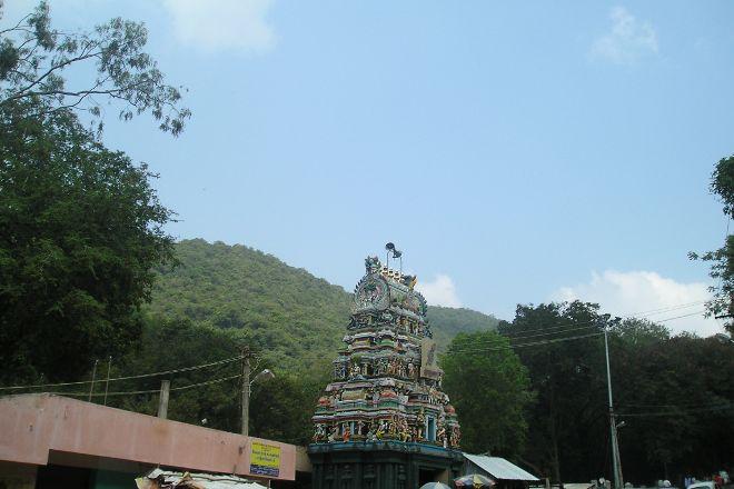 Pazhamudhir Solai, Madurai, India