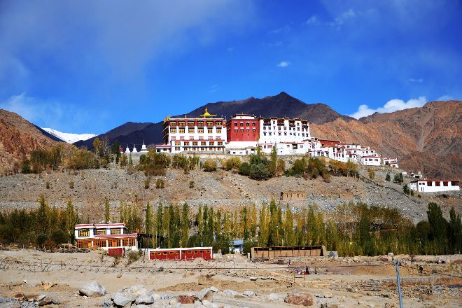 Phyang Monastery, Leh, India
