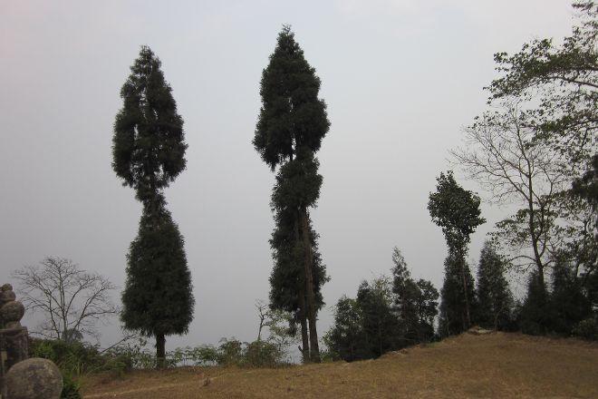 Tinchuley Village, Darjeeling, India