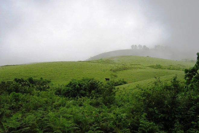 Vagamon, Idukki District, India