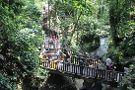 Agusto Bali Tours - Day Tours