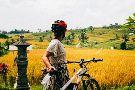 Green Bikes Bali