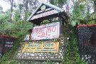 Malino Tea Plantation