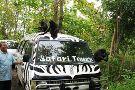 Safari Tours & Travel