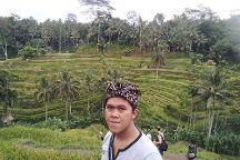 Agung Balitours, Ubud, Indonesia