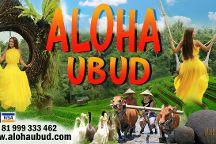 Aloha Ubud Swing