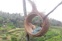 Bali Driver Gede, Denpasar, Indonesia
