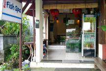 Bali Fish Spa