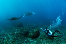 Bali Hai Diving Lembongan, Nusa Lembongan, Indonesia