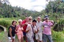 Dewa Alit - Private Tours, Ubud, Indonesia