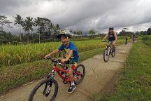 Greenbike Adventure, Ubud, Indonesia