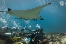 Ihasia Diving Komodo