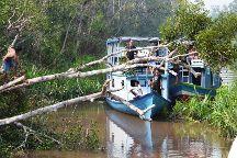 Kalimantan Tour Guide, Balikpapan, Indonesia