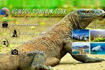 Komodo Dominik Tour