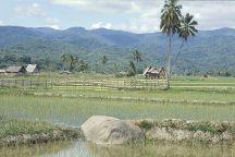 Lore Lindu National Park, Palu, Indonesia