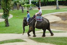 Mason Elephant Park, Tegalalang, Indonesia