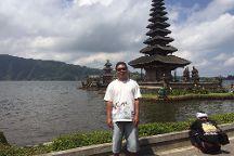 Nyoman Bali Driver